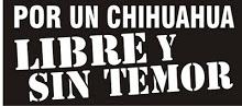 Por-un-Chihuahua-sin-temor